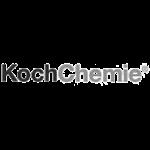Koch-Chemie